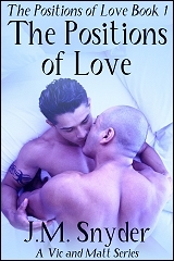 Cover for The Positions of Love
